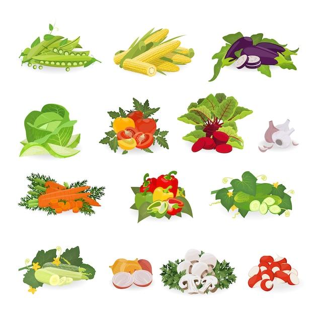 Векторные иллюстрации с набором овощей. здоровая пища. Premium векторы