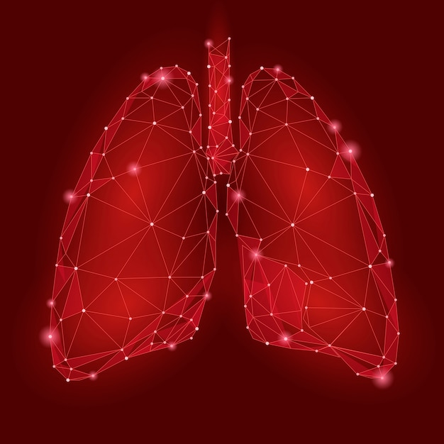 人間の内臓肺。低ポリ技術 Premiumベクター