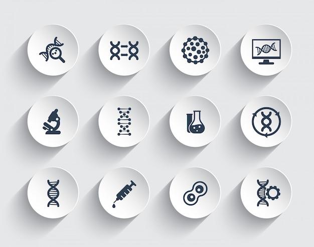 Генетика, цепи днк, генетическая модификация и иконки исследований Premium векторы