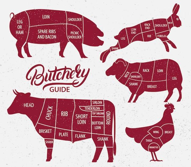 動物農場セット。牛肉、豚肉、羊肉、鶏肉のカット。 Premiumベクター