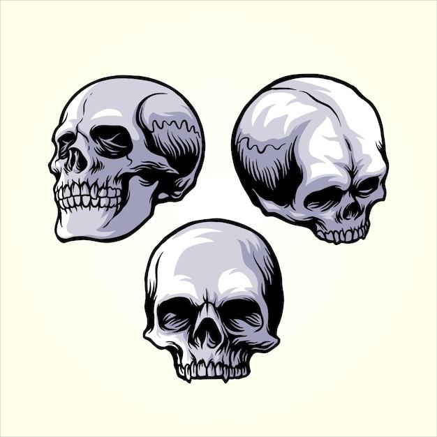 頭蓋骨セット Premiumベクター
