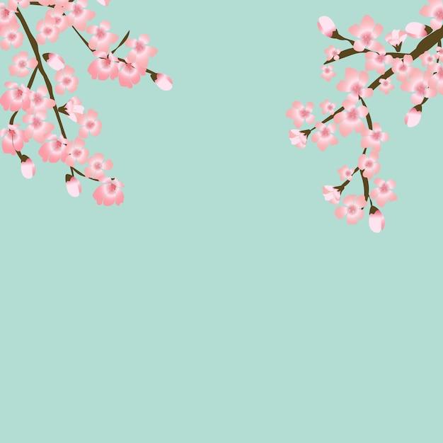 抽象的な花さくら花日本の自然な背景 Premiumベクター