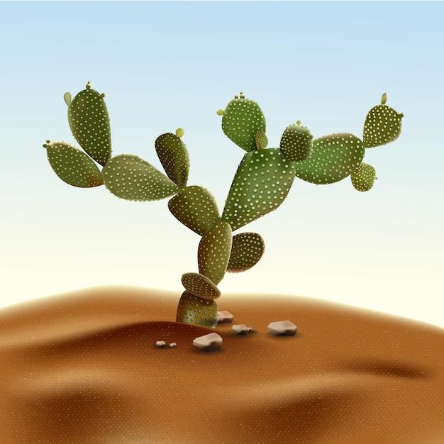 現実的な砂漠のサボテンのウチワサボテン。生息地の砂と岩に囲まれた砂漠のウチワサボテン植物。 Premiumベクター