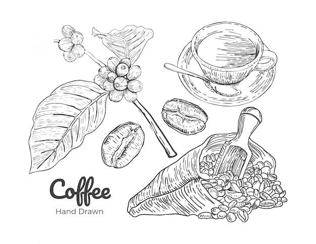 コーヒーの手描きのベクトル Premiumベクター