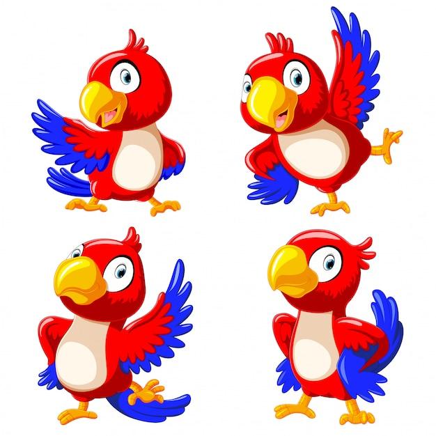 Сборник счастливых попугайных мультяшных танцев Premium векторы