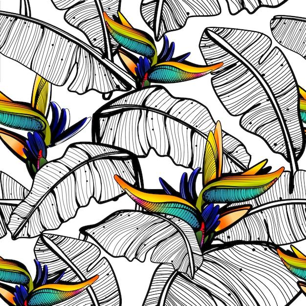 Листья райской птицы узор Premium векторы