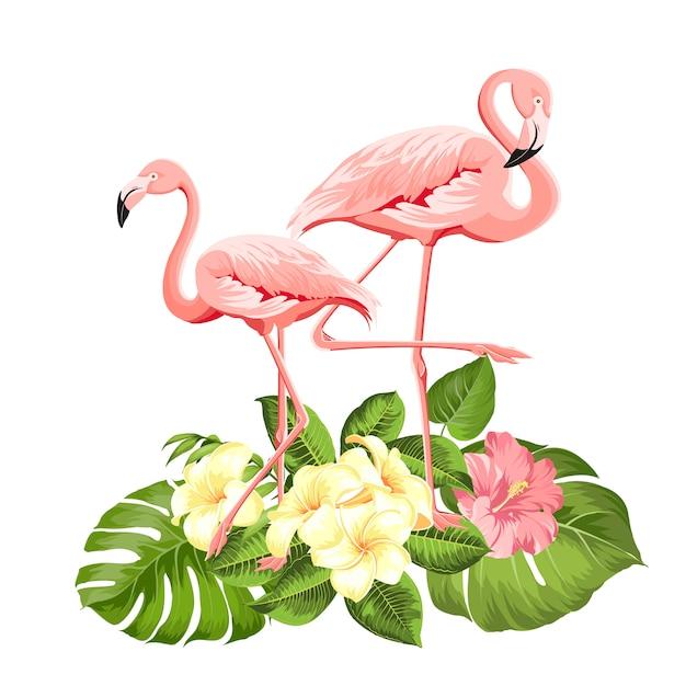 Фламинго фон. Premium векторы