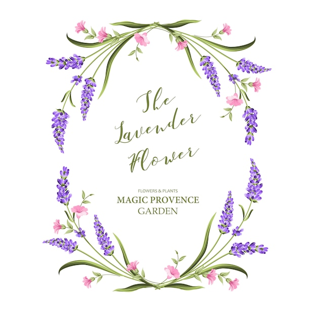 Элегантная открытка с цветами лаванды. Premium векторы