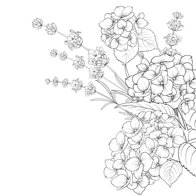 ラベンダーと分離されたアジサイの花の花輪 Premiumベクター