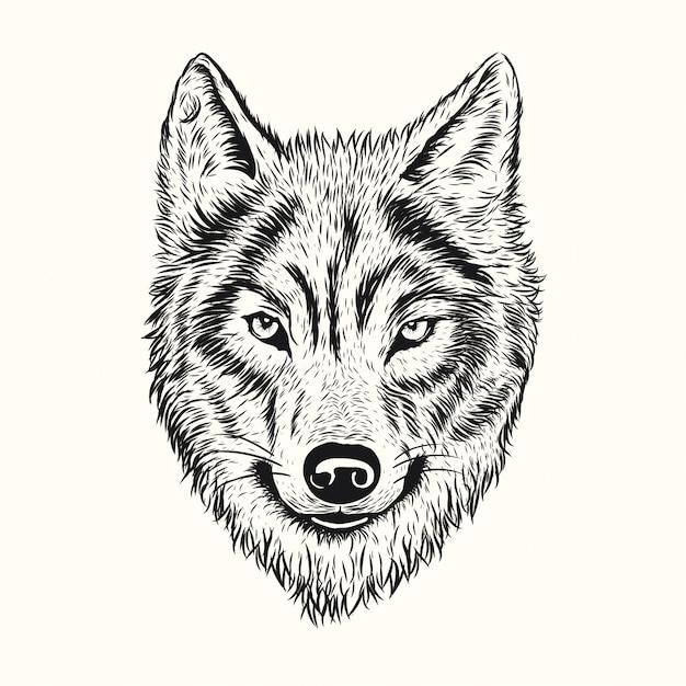 オオカミ に関するベクター画像写真素材psdファイル 無料