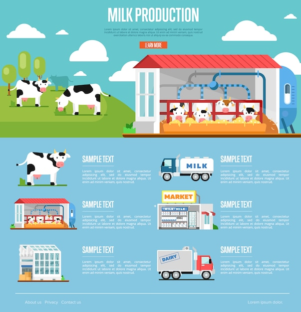 フラットスタイルの牛乳生産インフォグラフィック Premiumベクター