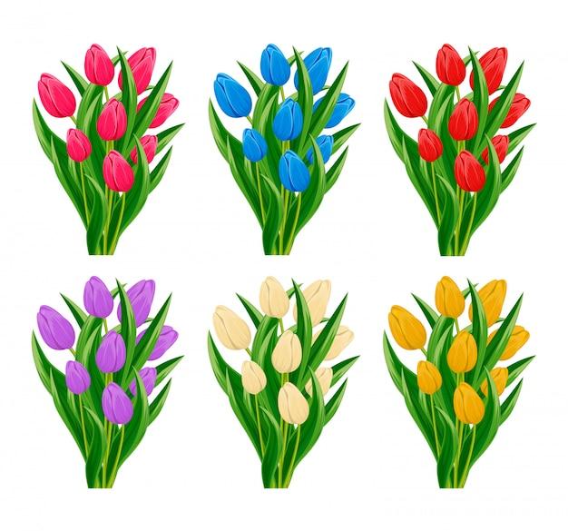 Весенний цветущий тюльпан Premium векторы