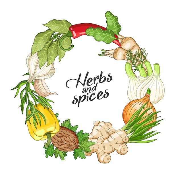 スパイスとベクトル野菜サークルテンプレート Premiumベクター
