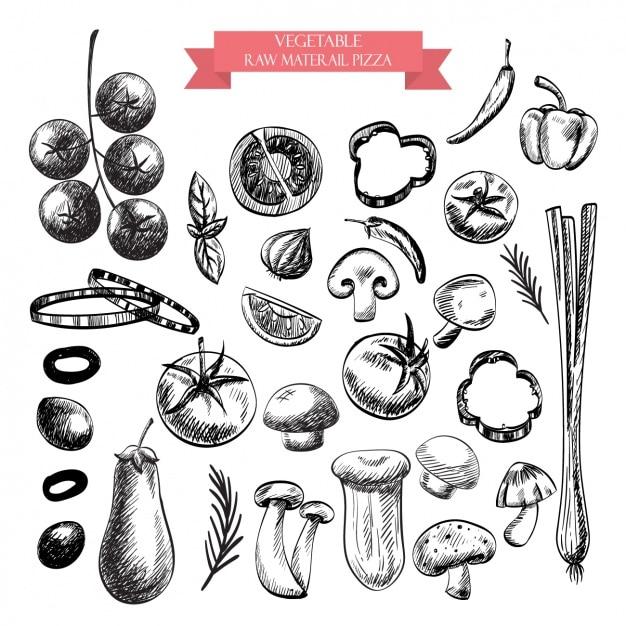 野菜のデザインコレクション 無料ベクター