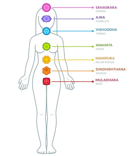 男性の体のチャクラインフォグラフィック Premiumベクター