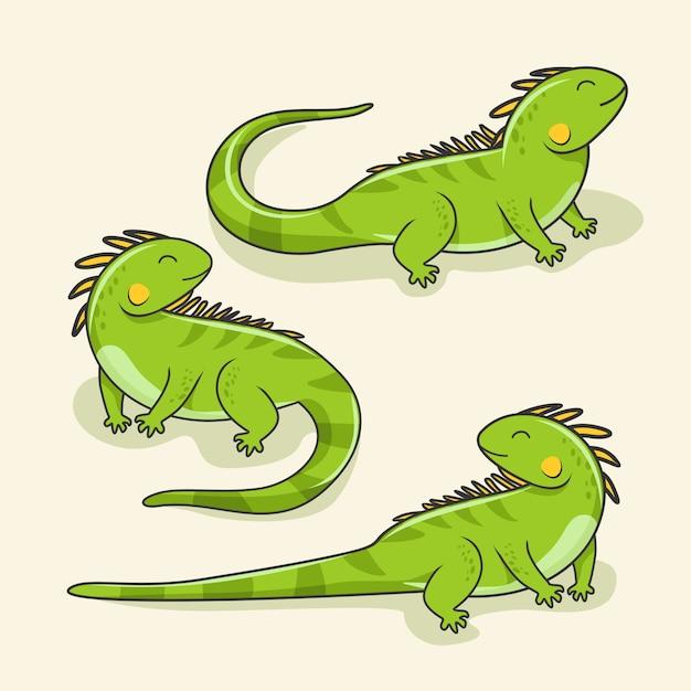 イグアナ漫画かわいいトカゲ動物爬虫類セット Premiumベクター