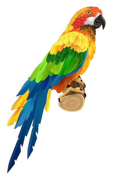 Красивый красочный попугай на ветке. птица, фауна, дикая природа. концепция тропиков. Бесплатные векторы