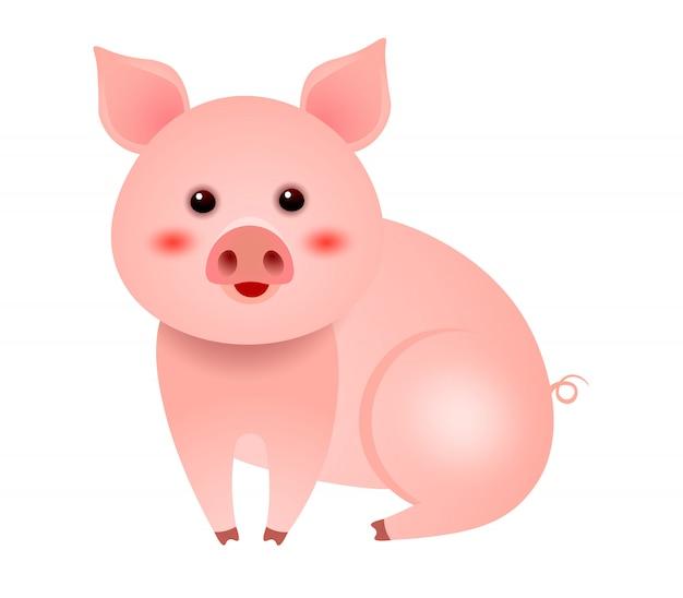 Милая маленькая свинья сидит на белом фоне иллюстрации Бесплатные векторы