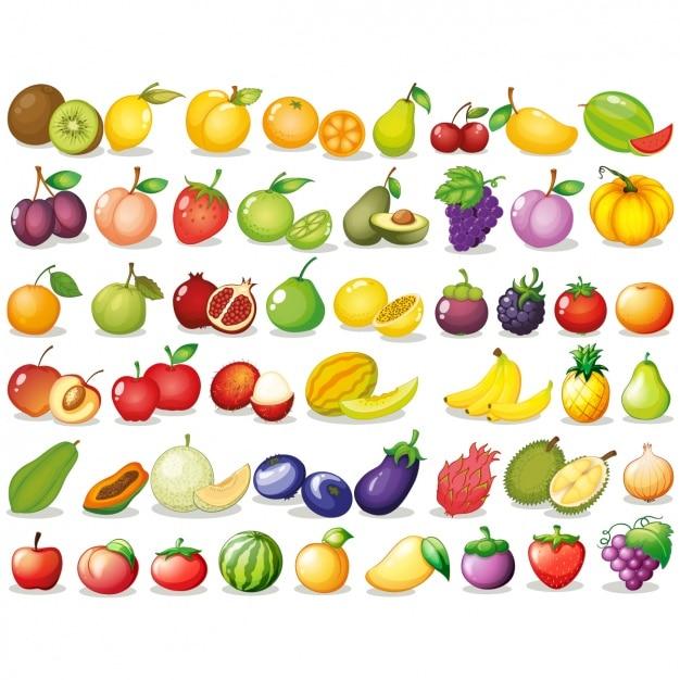 Коллекция цветное фрукты Premium векторы
