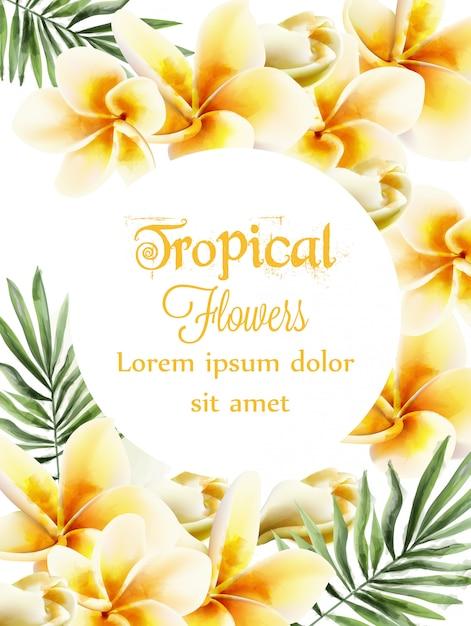 プルメリアの黄色い花の水彩画 Premiumベクター
