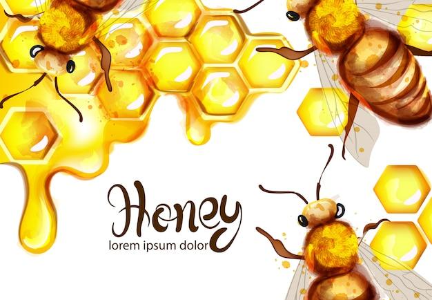 ハニカムとミツバチの水彩画 Premiumベクター