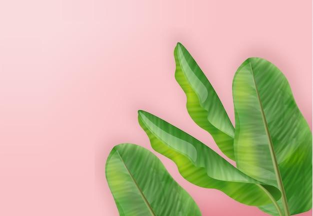 Тропик пальмовых листьев летний фон Premium векторы