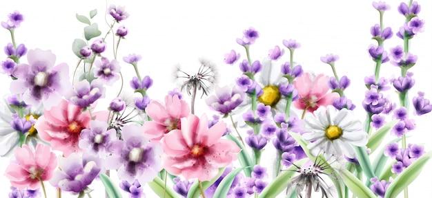 Лаванда и летние красочные цветы в акварели Premium векторы
