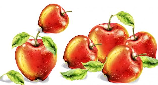 リンゴの水彩画。カラフルな果物。秋の収穫の図 Premiumベクター