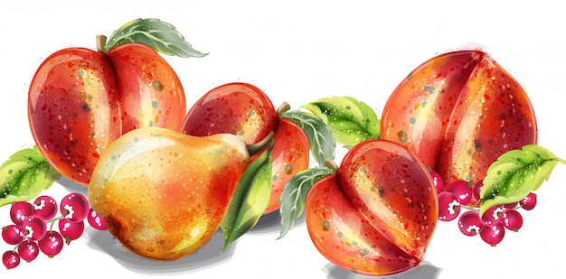 Яблоко, груша и персик акварель набор. красочные фрукты подробно расписаны стиль Premium векторы