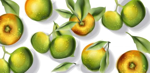 Яблоко фрукты шаблон акварель. вид сверху осенних урожаев Premium векторы