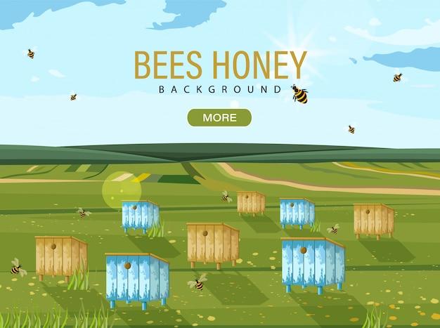 Пчелиный улей Premium векторы