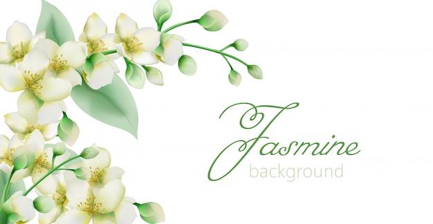 テキストのための場所と水彩の緑のジャスミンの花バナー 無料ベクター