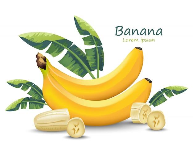 白いバナナの現実的な果物 Premiumベクター