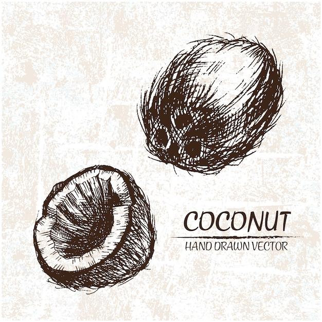 Дизайн ручной обращается кокосы Бесплатные векторы
