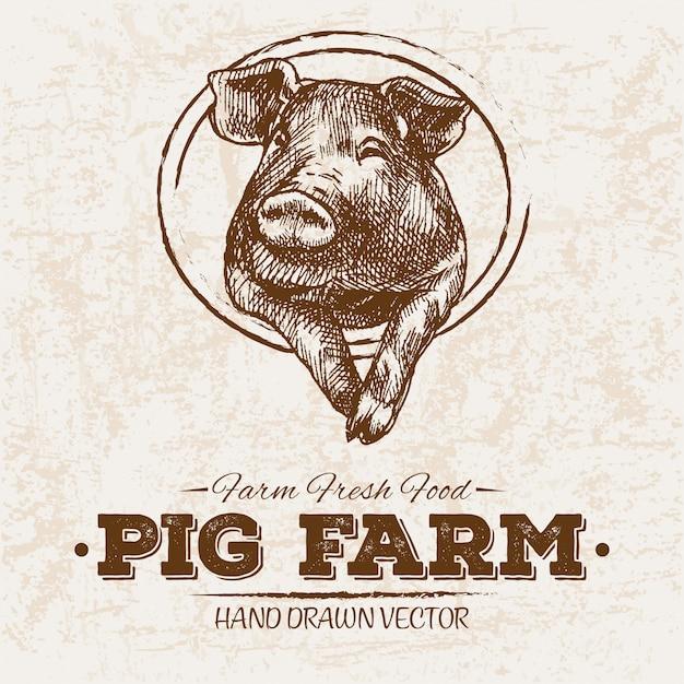 手描きの養豚場 Premiumベクター
