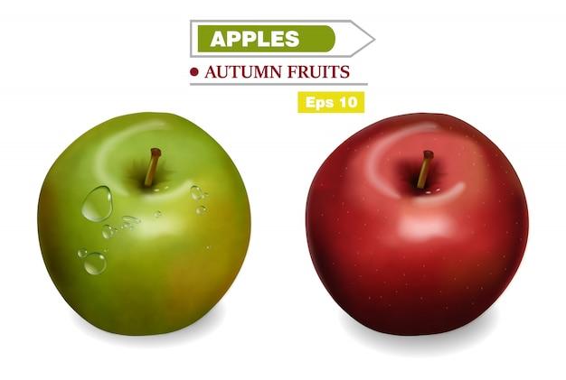 現実的な赤と緑のリンゴ Premiumベクター