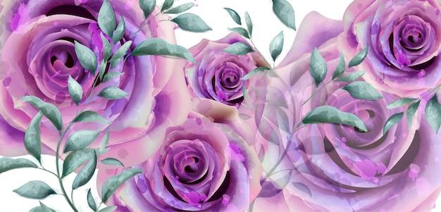 紫のバラの水彩バナー Premiumベクター