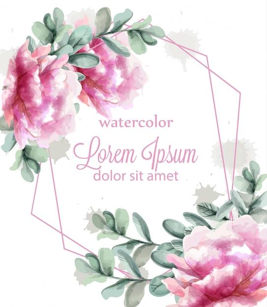 Розовый пион цветы рамка акварель Premium векторы