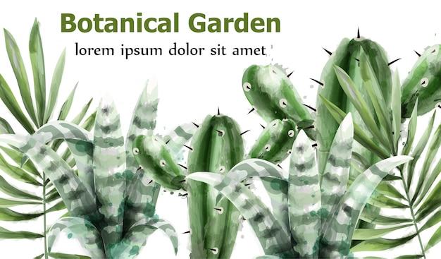 サボテンと多肉植物植物園の水彩画 Premiumベクター