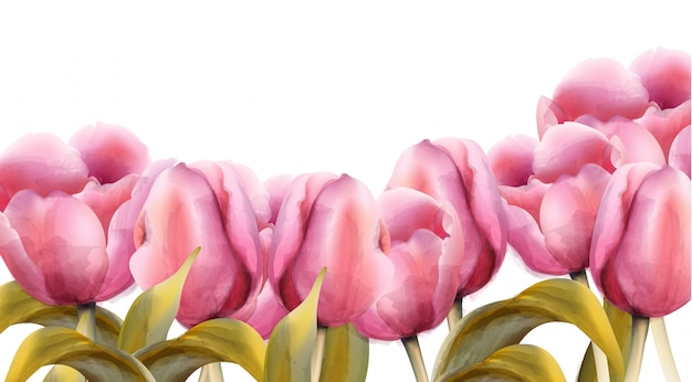 Акварельный баннер тюльпанов Premium векторы