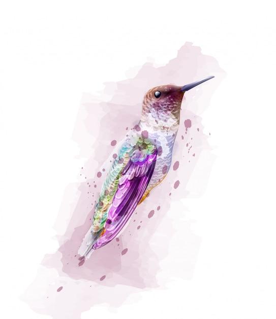 Тропик красочная птица акварель Premium векторы