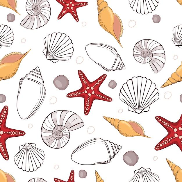 рисунок ракушек и морских звезд образок