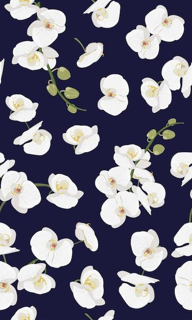 白蘭シームレス花柄 Premiumベクター