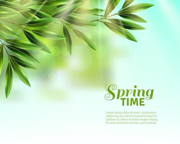 春の葉の背景 無料ベクター