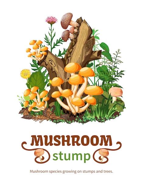 Виды диких грибов на фоне пня Бесплатные векторы