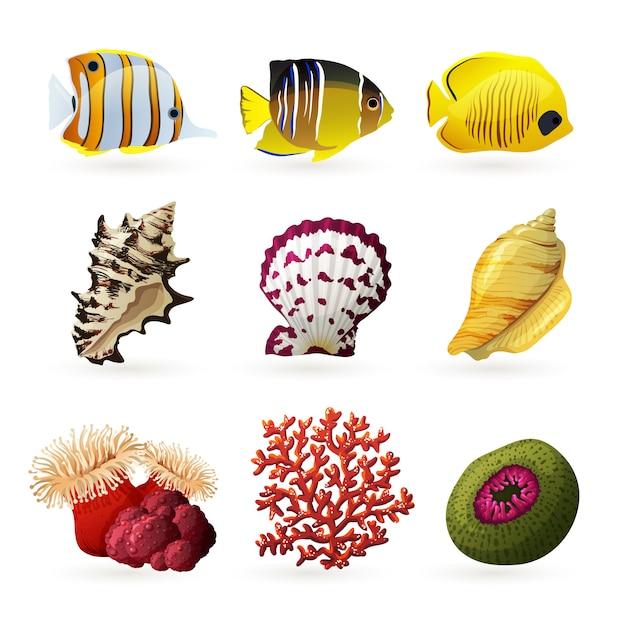 海の動物相のアイコン 無料ベクター