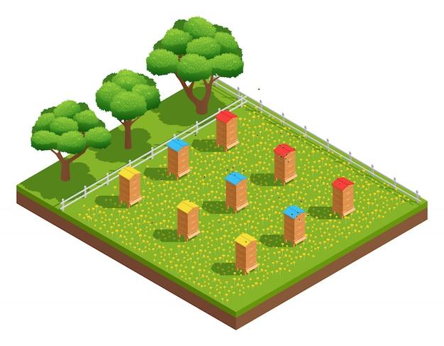 等尺性組成の木の近くの花を持つ草に木製の巣箱と養蜂場の養蜂場 無料ベクター
