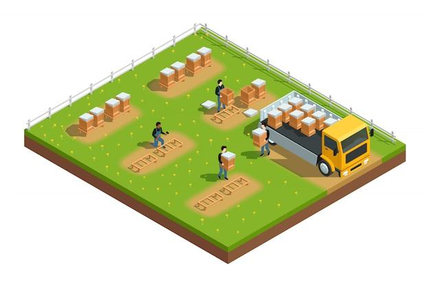 Изометрическая композиция сцены с работниками, устанавливающими ульи для пасеки на траве Бесплатные векторы