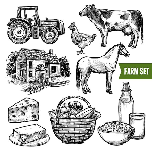 Набор органических ферм Бесплатные векторы