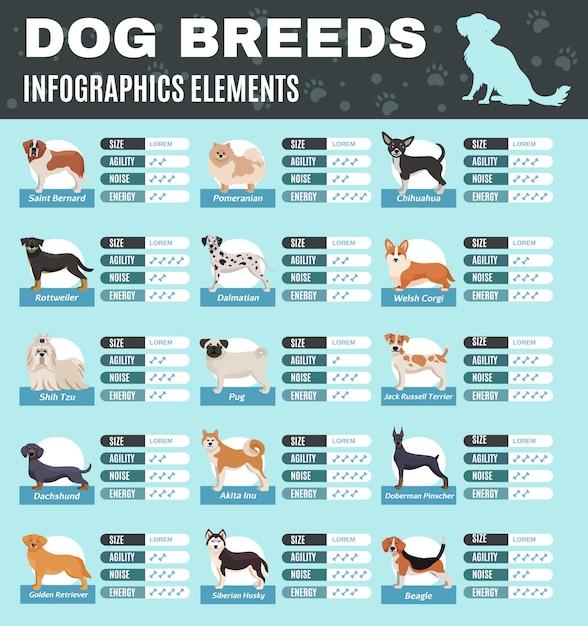 Породы собак инфографика Бесплатные векторы